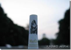 akira-n3