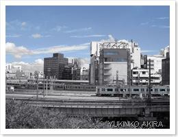ueno-blue3